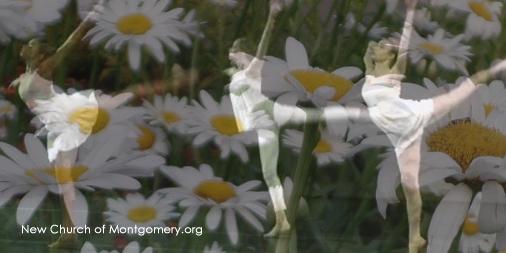 flower-ballet