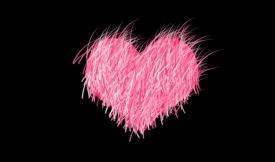 ncom-furry-heart