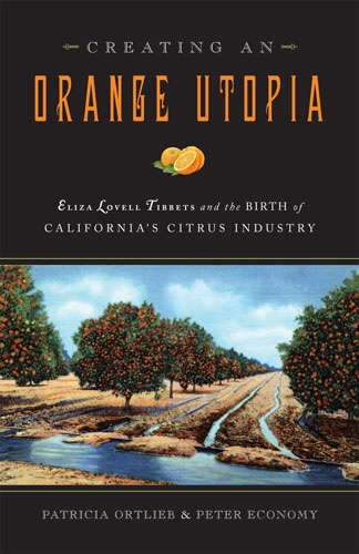 Creating an Orange Utopia